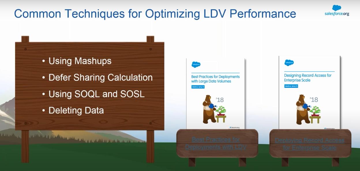LDV Performance